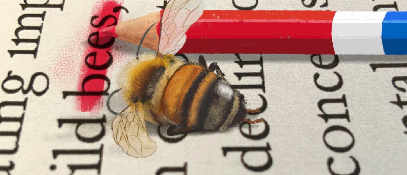 #BijenDit afgezwakte bijenrichtsnoer mag de Tweede Kamer niet zien Terwijl bijensterfte dramat