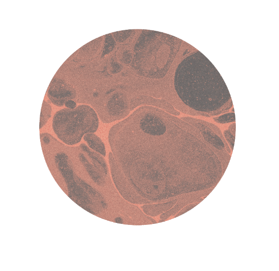 Oranje circle