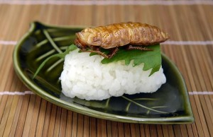 Gefrituurde kakkerlak: lekkernij of 'frankenfood'?